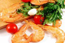 Free Shrimp 007 Bis Stock Photos - 16429903