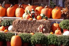 Free Fall Pumpkins, Hay And Scarecrows Stock Image - 16429921