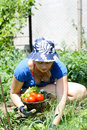 Free Woman Working In The Garden Royalty Free Stock Photos - 16433238