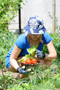 Free Woman Working In The Garden Stock Images - 16433244