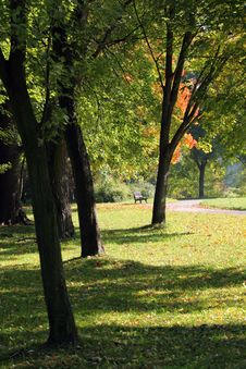 Free Autumn In The Park Stock Photography - 16430872