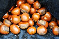 Free Fried Chestnuts Stock Image - 16432891