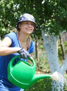 Free Woman Working In The Garden Stock Photo - 16433210