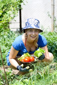 Free Woman Working In The Garden Royalty Free Stock Photography - 16433237