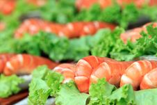 Free Shrimp With A Green Salad Royalty Free Stock Photos - 16433408