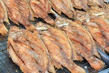 Free Grilled Fish Stock Photography - 16433422