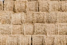Straw, Hay Background Stock Images