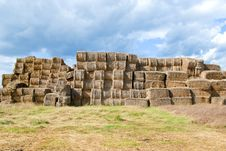 Free Haystacks Bales In Countryside Royalty Free Stock Image - 16437366