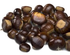 Free Chestnuts On White Background. Royalty Free Stock Photo - 16437425