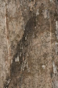 Free Mottled Pink Grunge Plaster Wall Stock Images - 16437434