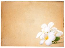 Free Vintage Paper Background Stock Photos - 16437503