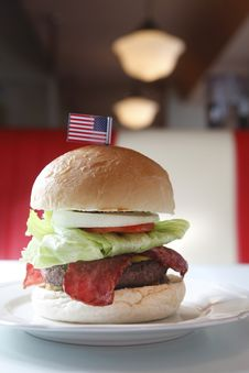 Free Hamburger Stock Images - 16437514