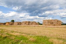 Free Haystacks Bales In Countryside Royalty Free Stock Image - 16437986