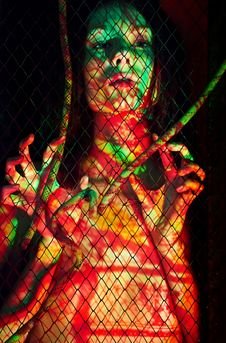 Free BodyPaint Female Throught The Lattice Stock Photo - 16439020