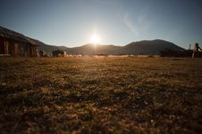 Free Country Grass Royalty Free Stock Images - 16439409