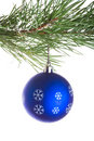 Free Blue Ball On Pine Tree Branch Royalty Free Stock Photo - 16447435
