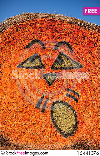 Pumpkin Face Stock Photo