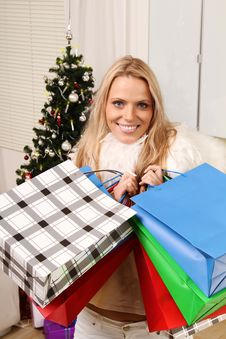 Free Christmas Shopping Royalty Free Stock Images - 16440299