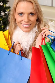 Free Christmas Shopping Royalty Free Stock Image - 16440346