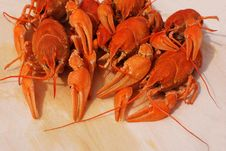 Boiled Crayfishes Royalty Free Stock Photography