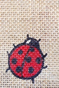 Free Lady Bug Canvas Stock Photography - 16440442