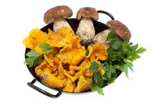 Free Mushrooms In Frying Pan Stock Photo - 16440450
