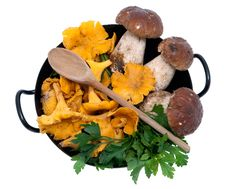 Free Mushrooms In Frying Pan Stock Photos - 16440453