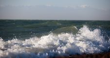 Free Wave On The Sea Stock Photography - 16442742