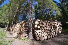 Free Lumber, Dolomites Stock Image - 16442981