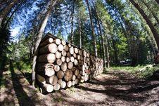 Lumber, Dolomites Royalty Free Stock Image