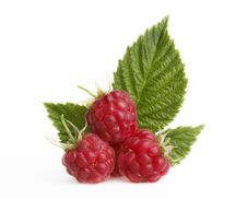Free Raspberry Stock Images - 16443104