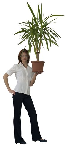 Woman With Plant In Flowerpot Royalty Free Stock Images