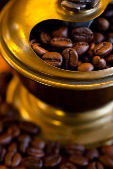 Free Coffee Mill Royalty Free Stock Photos - 16443758