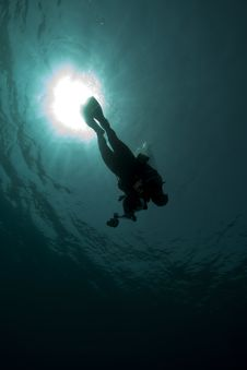 Diver - Underwater Photographer- Silhouette Royalty Free Stock Photo