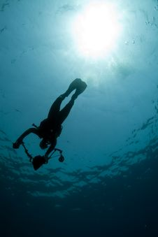 Diver - Underwater Photographer- Silhouette Stock Photos