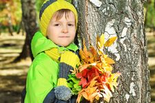 Free Boy And Autumn Royalty Free Stock Image - 16445146