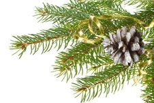 Free Decorated Fir Tree With Cone Royalty Free Stock Photography - 16447527