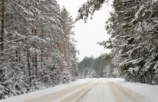 Free Country Road In Snow Stock Images - 16447544
