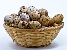 Free Quail Eggs In The Basket Royalty Free Stock Photography - 16449767