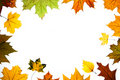 Free Autumn Leaves Space For Text Centered Royalty Free Stock Images - 16458729