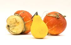 Free Mini Pumpkins Isolated On A White Royalty Free Stock Photography - 16450607