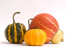 Free Mini Pumpkins Isolated On A White Stock Photos - 16450643