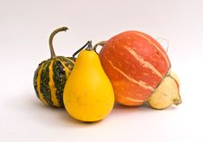 Free Mini Pumpkins Isolated Stock Photos - 16450653
