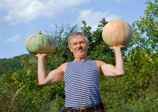 Free Man With Pumpkins 9 Stock Images - 16452424
