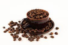 Free Coffee Royalty Free Stock Photography - 16452557
