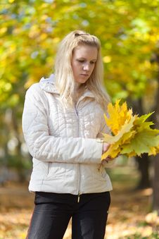 Girl Is Standing And Holding A Yellow Maple Leaves Stock Photo