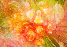 Vintage Stylized Floral Picture Stock Photos