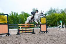 Free Jockey Jumps Over A Hurdle Royalty Free Stock Image - 16454976