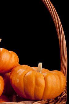 Free Pumpkins Royalty Free Stock Photo - 16455065