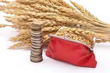 Free Red Purse With Wheat Ears Stock Photography - 16455542
